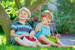 two young boys sitting under a tree barefoot with buckets of raspberries